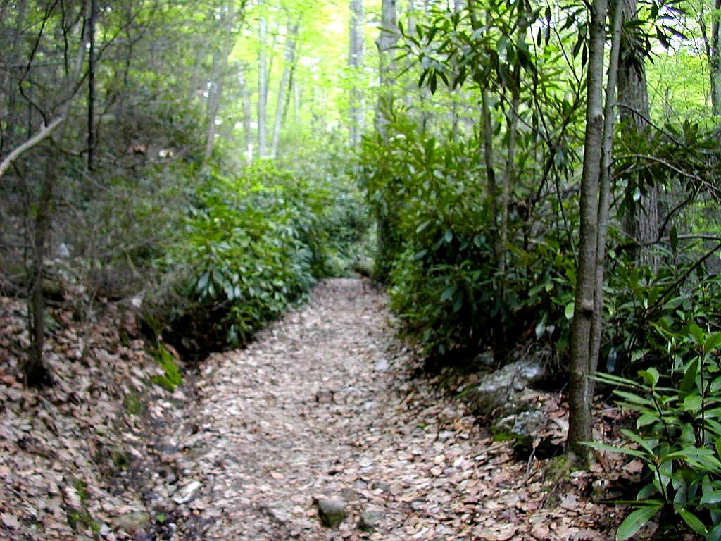 harpers ferry lesbian personals Harpers ferry offers everything you could want in an adventurous weekend outdoor delights like hiking there are no singles available on this trip.