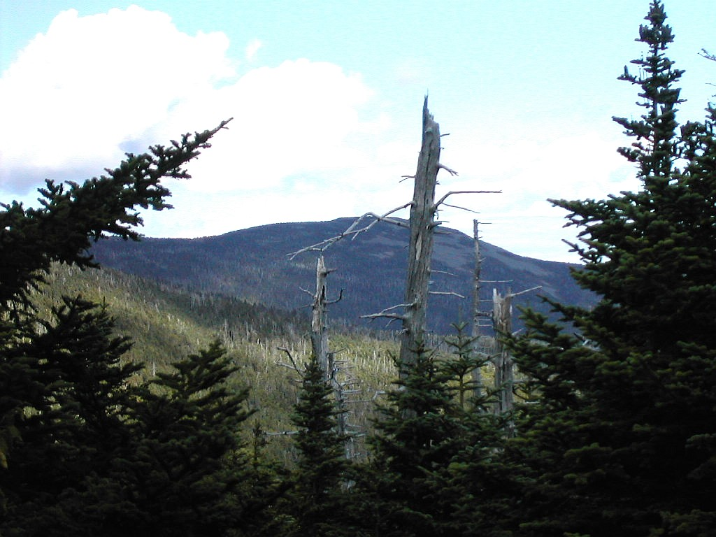 Maine adventure august 30 september 14 2004 it had turned out to be a beautiful clear blue sky day white cap is the highest peak on the at between the bigelows and katahdin publicscrutiny Gallery